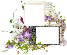 Double frames with flowers