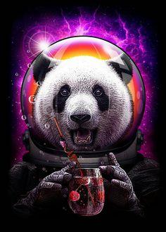 The motor panda in space Panda Wallpapers, Cute Wallpapers, Wallpaper Backgrounds, Tier Wallpaper, Animal Wallpaper, Panda Art, Panda Love, Psychedelic Art, Cute Art