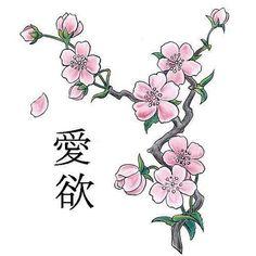 Сакура и иероглифы, сакура, иероглифы
