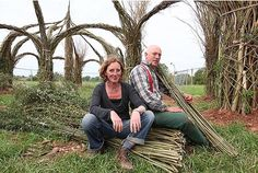 The 'green cathedral', in Longrun Meadows, Taunton, measures 30m by 16m (98 ft by 54ft) and is made from living Somerset willow. The awesome structure was designed and created by Somerset-based sculptors, Stefan Jennings and Sophie Courtiour.