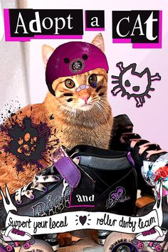 Dzień Kota / Cat Day Love Cats and play Roller Derby! #lovecats #rollerderby #warsawhellcats #rollergirls #catday