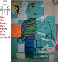 "I blew up the blank Lego figure using my projector and traced it onto chart paper. The kids made half skeleton, half ""normal"" person. They loved it!"