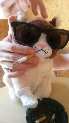 Grumpy LDLC fait sa crise d'ado  Fumer nuit gravement à votre santé et à celle de votre entourage .Fumer crée une forte dépendance, ne commencez pas