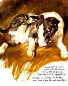 Bull Terrier -Rien  Poortvliet Dog Print