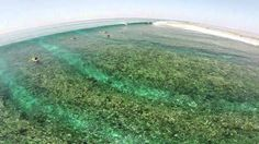 Surfing Maldives, Blue Bowls / DJI Phantom 2 Drone HD