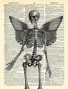 Art Sketches, Art Drawings, Skeleton Art, Arte Obscura, Anatomy Art, Wing Anatomy, Goth Art, Poster Prints, Art Prints