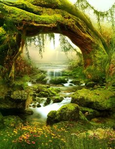 Green Forest in Fairy Tale Photography backdrops Dreaming Green Light Kids Birthday Vinyl Backdrops for Photography Custom Background For Photography, Photography Backdrops, Landscape Photography, Nature Photography, Photography Backgrounds, Photo Backdrops, Imagen Natural, Beautiful Places, Beautiful Pictures