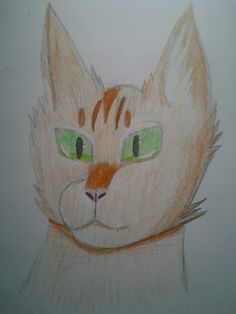 -_- i really hate this drawing of firestar but o well, its my entry for contest by me @emberfeather6