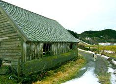 teigland, lonevåg, norway