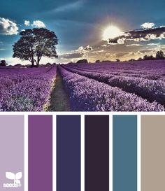lavender setting color palette from Design Seeds Colour Pallette, Color Palate, Colour Schemes, Color Patterns, Color Combos, Lavender Color Scheme, Paint Combinations, Purple Palette, Pantone