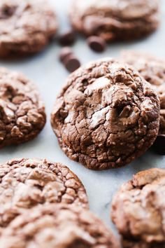 These Soft and Chewy Double Chocolate Cookies are rich, delicious and LOADED with chocolate! With a chocolate cookie base and chocolate chips this is truly a chocolate lover's cookie. They taste like a brownie in cookie form. ~ Chef In Training Delicious Cookie Recipes, Baking Recipes, Snack Recipes, Dessert Recipes, Desserts, Milk Cookies, Yummy Cookies, Cookies Et Biscuits, Biscuits Double Chocolat