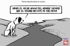 Perros abandonados en verano