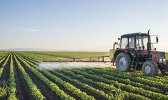 Scientists Debate Safety of Glyphosate http://news.organicfoodmaps.com/Ms  More news @ http://organicfoodreport.com  #news #organic #food #gmo #nutrition