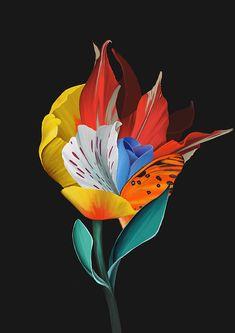 Border Design, Botanical Illustration, Flower Art, Art Sketches, Digital Art, Artsy, Drawings, Collage, Floral