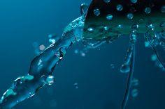 What Is LEED? - Water Efficiency