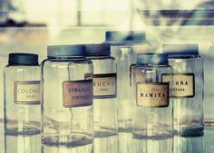 apocathery jars | Flickr - Photo Sharing!