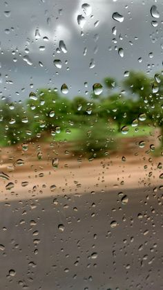 Photography of Raining day water drops #photography #raining #waterdrops #rain