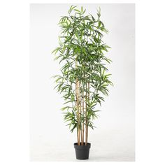 Bamboo is a touch more exotic - everlasting greenery: FEJKA Planta artificial en maceta - IKEA