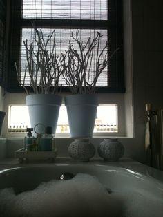 .. Bathroom Toilets, Bathrooms, Ramen, Planting Flowers, Planter Pots, Sweet Home, Living Room, Interior Design, Plants