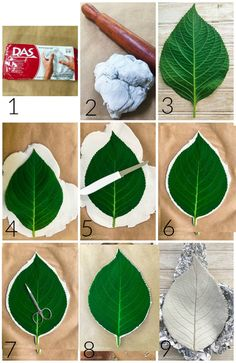Clay Leaf Bowls - Easy DIY Project - 2 Bees in a Pod - Tutorial for clay leaf b. - Clay Leaf Bowls – Easy DIY Project – 2 Bees in a Pod – Tutorial for clay leaf bowls Informati - Clay Crafts For Kids, Crafts To Sell, Diy And Crafts, Sell Diy, Air Dry Clay Ideas For Kids, Decor Crafts, Air Dry Clay Crafts, Leaf Crafts, Arts And Crafts