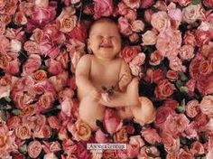 One of my favorite Anne Geddes pictures!