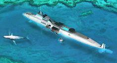 Migaloo private submarine