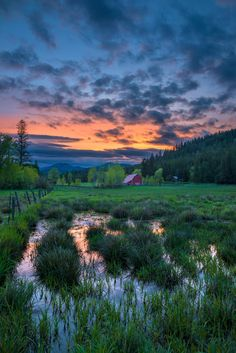 Farm meadow near Twin Lakes North Idaho by Criag Goodwin -Your Outdoors Photos: May 2016   The Spokesman-Review