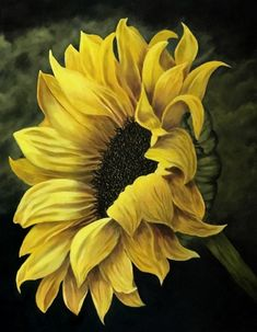 What is Your Painting Style? How do you find your own painting style? What is your painting style? Acrylic Painting Flowers, Acrylic Painting Canvas, Canvas Art, Easy Paintings, Landscape Paintings, Original Paintings, Sunflower Pictures, Sunflower Wallpaper, Flower Landscape