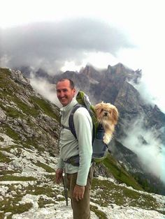 Lhasa Apso goes on a mountain hike