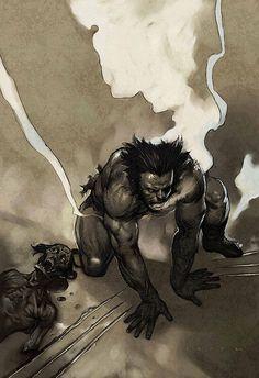 ✭ Wolverine by Leinil Yu
