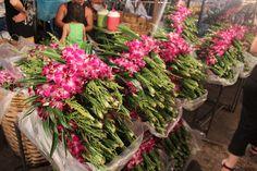 Bangkok, le marché aux fleurs