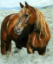 paintings of painted horses - Google Search
