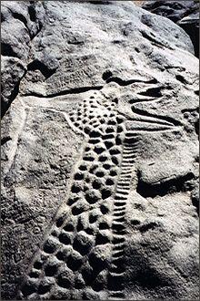 the worlds largest rock art petroglyph dabous giraffe - 561×850