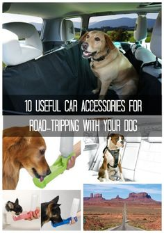 10 Useful Car Accessories for Road-Tripping with Your Pooch. Click for the coolest pet #travelhacks
