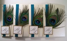 peacock feathers : )