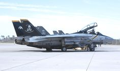 Fun Fly, F14 Tomcat, Jolly Roger, Military Aircraft, Planes, Fighter Jets, Navy, Pattern, Historia