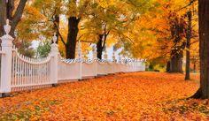 West Bennington ,Vermont..... autumn foliage scenic landscape. I love this ...