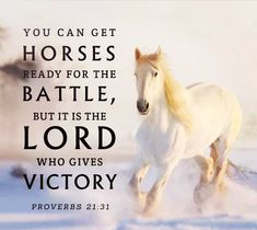 Scripture Verses, Bible Scriptures, Bible Book, Faith Quotes, Bible Quotes, Ecclesiastes 7, Inspirational Horse Quotes, Proverbs 21, My Father's House