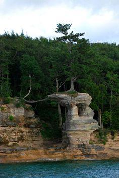 El pino imposible que vive sobre la Roca de la Capilla Chapel rock, la Roca de la Capilla, es una estructura de piedra arenisca situada en las orillas del lago Michigan,  en el Parque Nacional Pictured Rocks (EEUU).