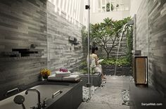 Shower Natural trees beautiful and Preview build.