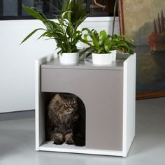 K-Berth Cat House: Another one from Pousse Creative; this wooden cat house comes with four built-in planters and a small pillow for your cat to enjoy a nice nap.