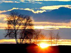 best image for pictures for desktop Tree Nature Wallpaper, Sunrise Wallpaper, Full Hd Pictures, Desktop Pictures, Vintage Nature Photography, Hd Cool Wallpapers, Wallpaper Desktop, Good Day Sunshine, Sunset Landscape
