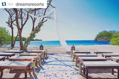 #Repost @dreamsresorts with @repostapp.  Wedding dreams do come true. #WeddingWednesday #DreamsLasMareas #CostaRica #weddingdecor #walkdowntheaisle #beachwedding #destinationwedding #weddingplanning #DreamsWedding #SayIDo