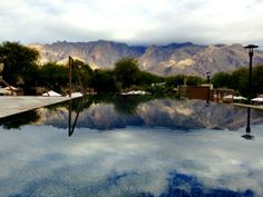 Our visit to the Westin La Paloma Resort and Spa