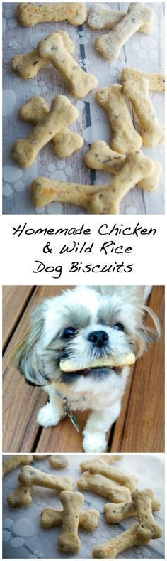 Homemade Chicken & Wild Rice Dog Biscuits Carries Experimental Kitchen Treat your dogs to homemade dog biscuits using fresh wholesome ingredients. Puppy Treats, Diy Dog Treats, Dog Treat Recipes, Healthy Dog Treats, Dog Food Recipes, Food Tips, Organic Dog Treats, Dog Biscuit Recipes, Healthy Pets