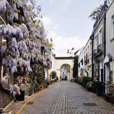 """matloboes: """"Another dreamy spot covered in wisteria 💜 Hope you all had an amazing Friday! London City, Wisteria, Photo And Video, Street, Amazing, Pretty, Instagram Posts, Plants, Climbing"""