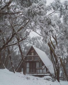 Warm Cabin in Winter