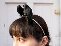 lovebirds - two blackbirds perch headband