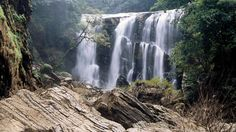 Drench in the serenity of the place - Coorg Karnataka, Call - 9386591169 #VacationTravel #Travel #Coorg #Karnataka #Tours #Falls #Wildlife
