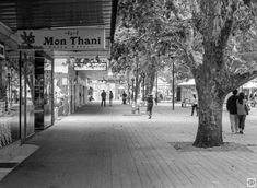 T Max, Urban Landscape, Olympus, Landscape Photography, Street View, Calm, Australia, Life, Scenery Photography